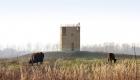 026-uitkijktoren-stokkem