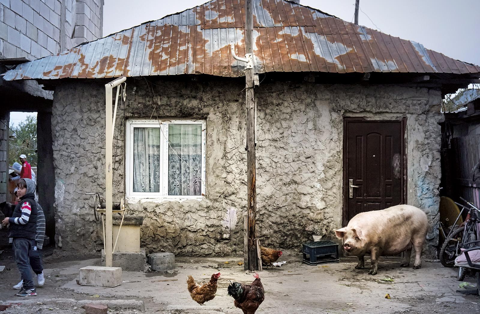 © Andrei Mărgulescu