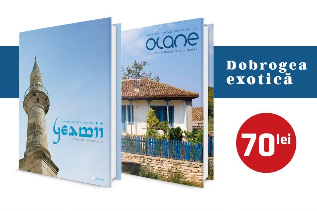 5home_Olane_GEAMII