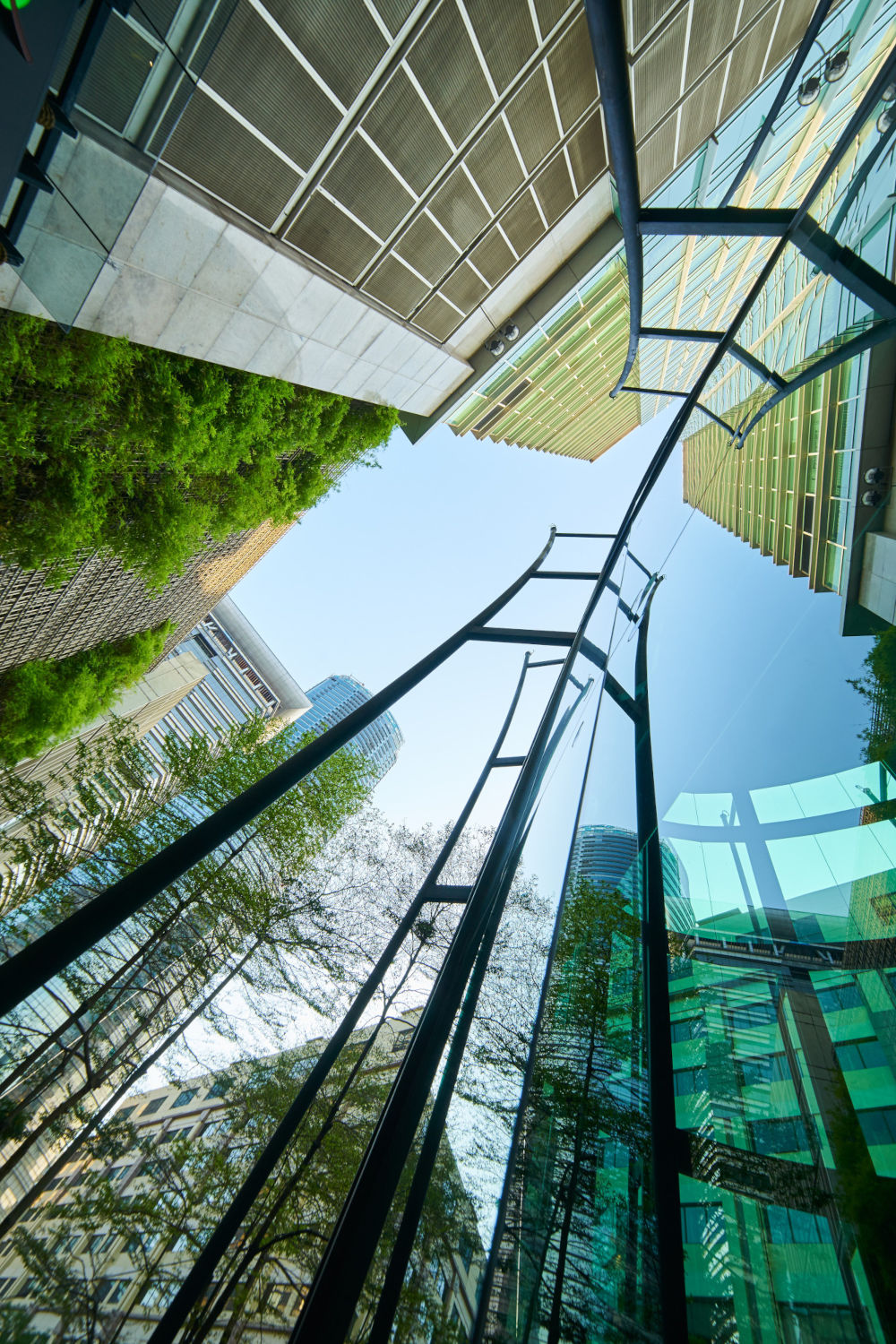 Low angle shot of modern glass buildings and green with clear sky background. Vertical format .