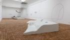 amplifying_nature_exhibition_fot_anna_zagrodzka-1