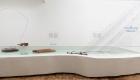amplifying_nature_exhibition_fot_anna_zagrodzka-4