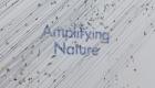 amplifying_nature_exhibition_fot_anna_zagrodzka-9