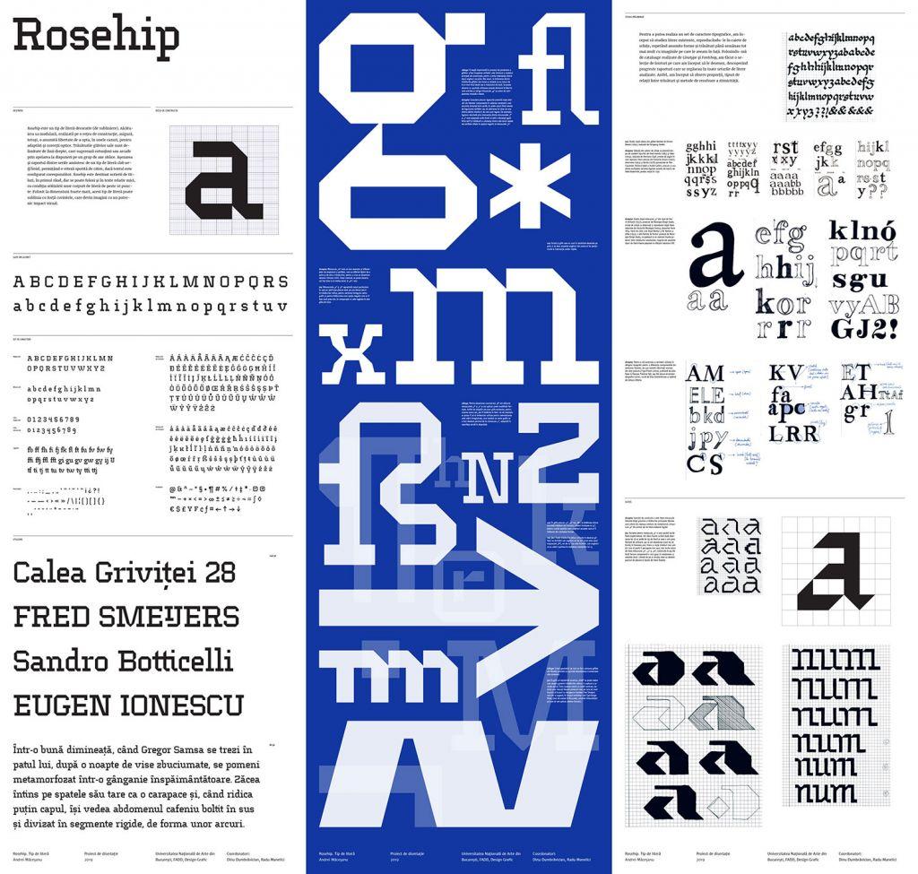"""Andrei Măceșanu -Tip de literă decorativ """"Rosehip""""- Proiect de masterat, 2019, coord. Dinu Dumbrăvician, Radu Manelici"""