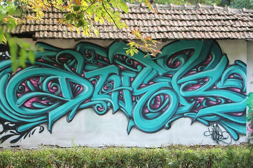 Artist: Doter - România.Festival Internațional de Graffiti Timișoara 2011. Locul desfășurării: Parcul Central - Uszoda