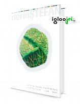 _igloojoi_dorin_stefan-01