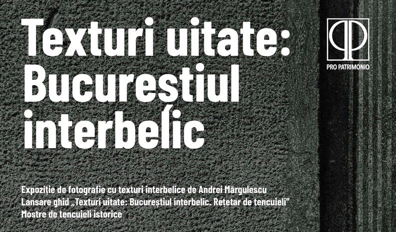 Poza-03-Poster-Tencuieli-mic