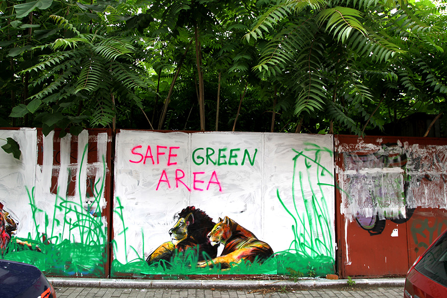 safe-green-area-by-mihai-zgondoiu