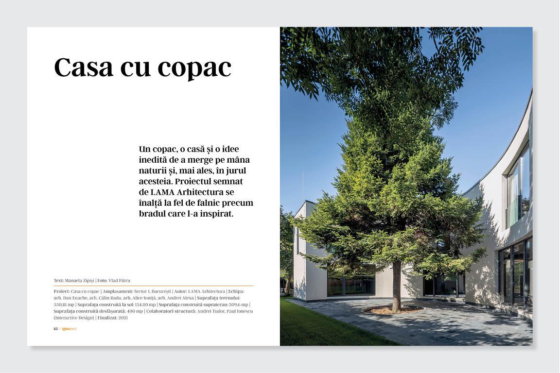 Casa cu copac, Lama Arhitectura