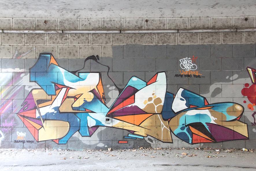 Artist: Teos – Elveția. Festival Internațional de Graffiti Timișoara 2011. Locul desfășurării: Parcul Central - Uszoda