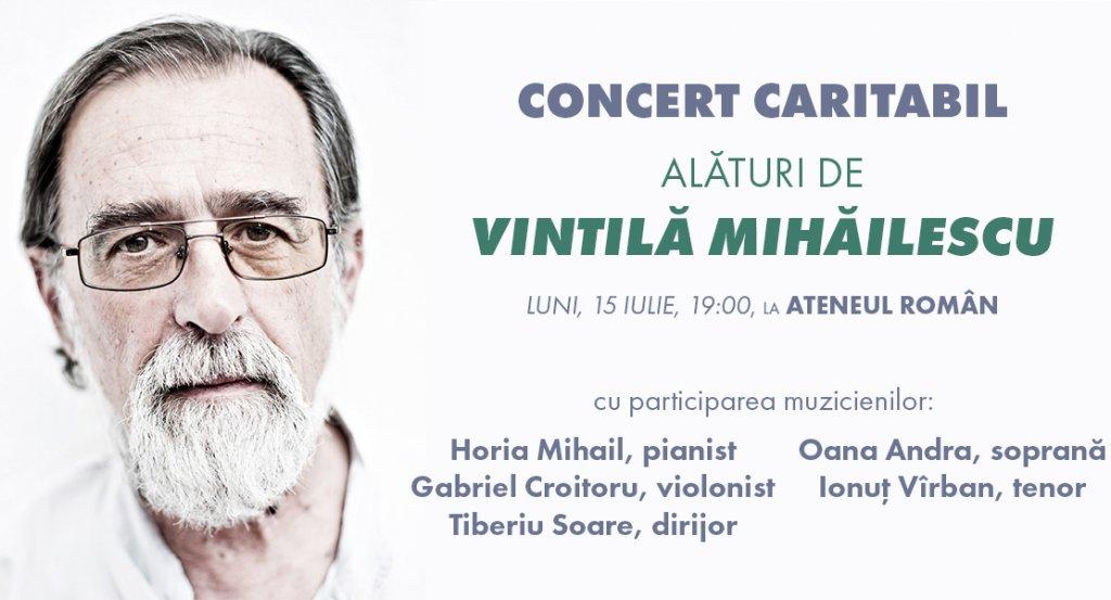 vizual-concert-caritabil