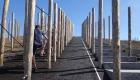 beringen-postindustrial-landscape-playground-16-carve-hannah-schubert