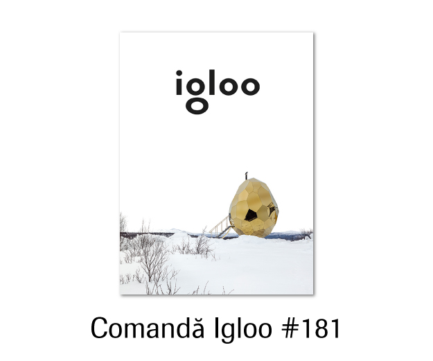 igloo 181