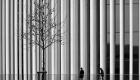 Filarmonica Luxemburg, arhitectură: Christian de Portzamparc
