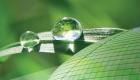 Creează-ţi propria poveste cu sticla Saint-Gobain Glass