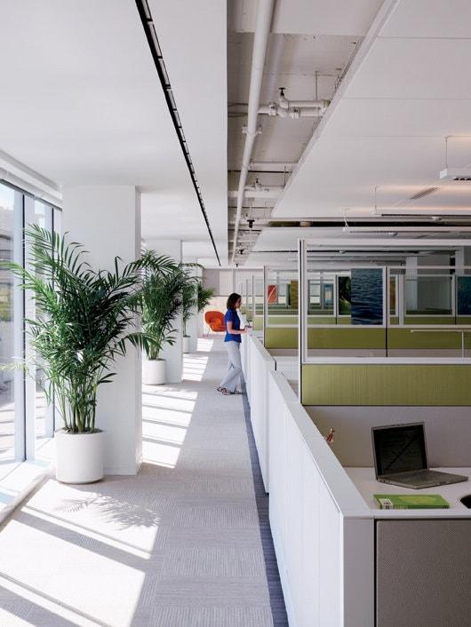 Clădiri verzi. Certificare LEED