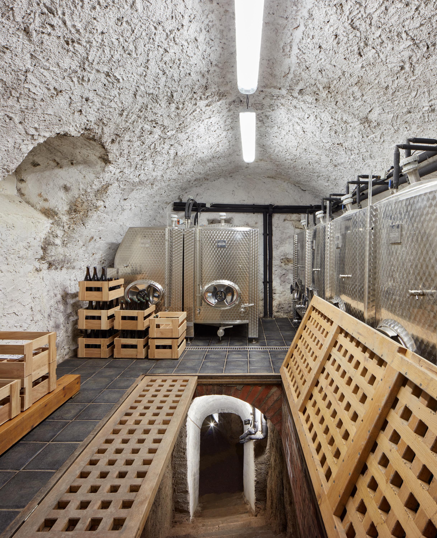 winery-nesetril-ora-boysplaynice-19